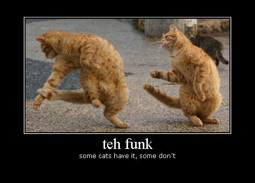 Funk Cats
