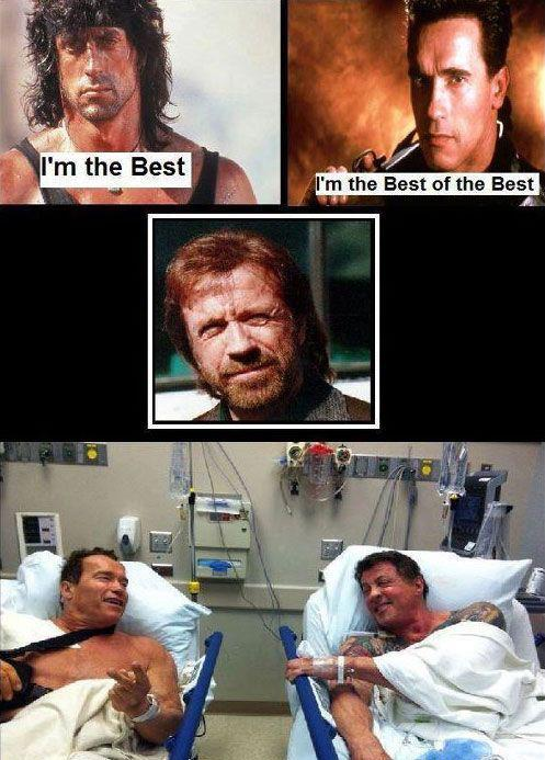Related pictures chuck norris vs